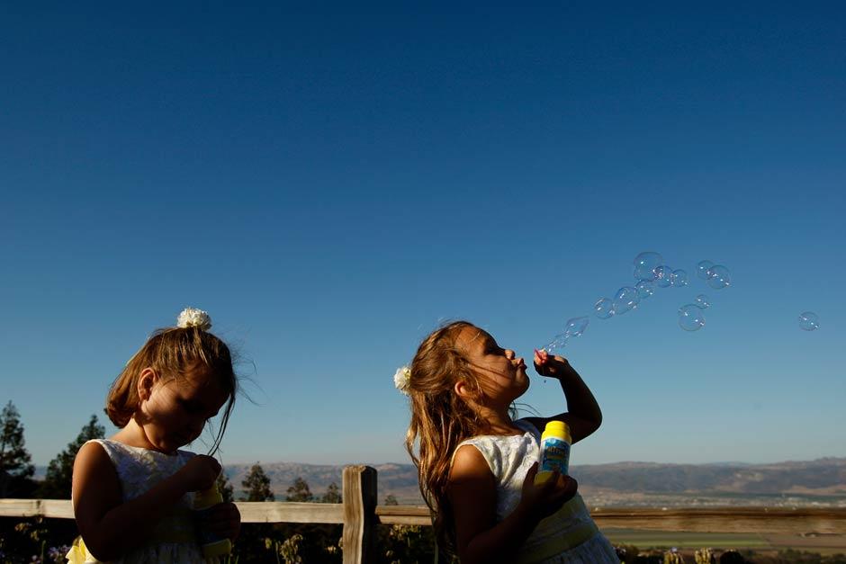 Hahn Estates winery wedding