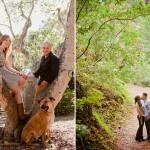 engagement photo in trees