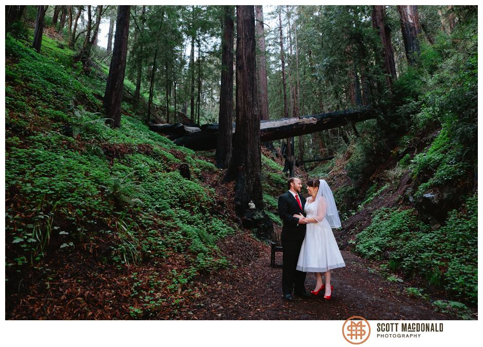 Big Sur wedding in the Redwoods